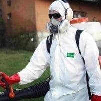 Control de plagas en el sector alimentario, pasos a seguir