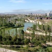 Plaga de pulgas y mosquitos en el parque de La Canaleta