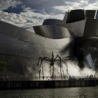 ¿Cuáles son las plagas más comunes en Bilbao en invierno ?